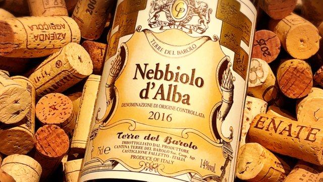 Nebbiolo d'Alba