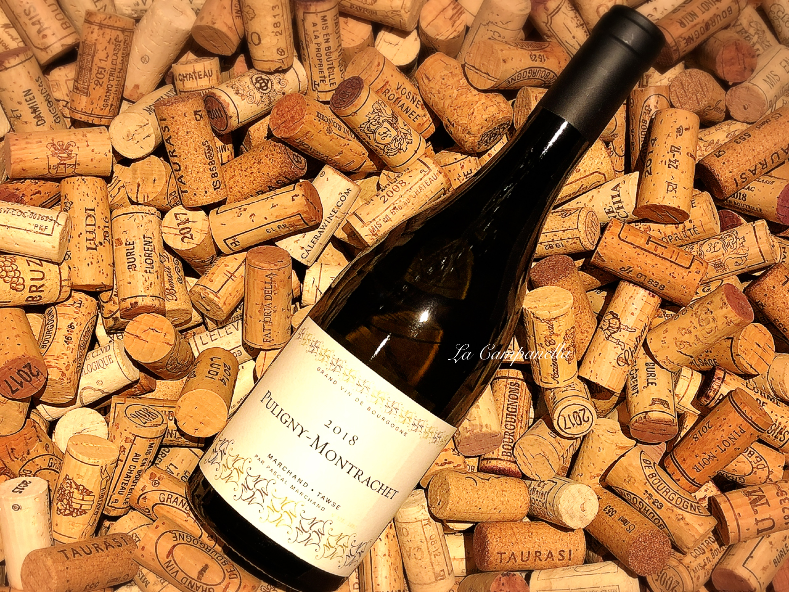 Puligny Montrachet 2018 MARCHAND TAWSE